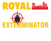 Reliable Bed Bug Exterminator in San Antonio